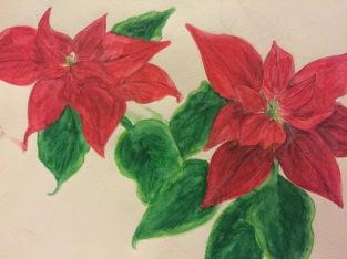 Poinsettia 2